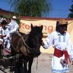 Festival Kolping (11)