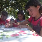 tabara copii (5)